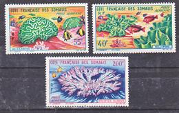 Cote Des Somalis PA 34 36 Faune Corallienne 34 Leg Clair Neuf Avec Trace De Charnière* TB  MH Cote **27 - Nuevos