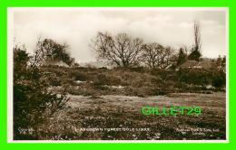 ASHDOWN FOREST,  UK - GOLF LINKS - RAPHAEL TUCK & SONS, LTD - F. R. - REAL PHOTOGRAPH - - Angleterre