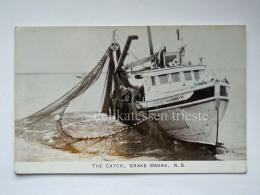 CANADA GRAND MANAN The Catch Fishing Boat Fisherman Boat Old Postcard - New Brunswick