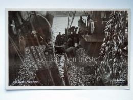 NORVEGIA NORGE Fra Livet FISKETIDEN Fish Fisherman Old Postcard - Norvegia