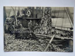 NORVEGIA NORGE Sildefiske Fish Fisherman Old Postcard - Norvegia