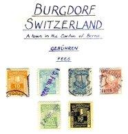 SWITZERLAND, Burgdorf, Used, F/VF - Fiscaux