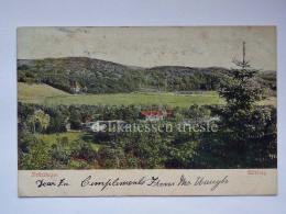 SVEZIA Sverige SWEDEN GOTEBORG Göteborg Slottsskogen Old Postcard - Svezia