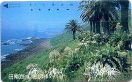 Telefonkarte Japan -  Landschaft - Palmen - 110-011 - Japan