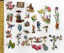 CHROMOS DECOUPIS A13 NOMBREUSES MINIATURES - Flowers