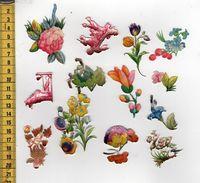 CHROMOS DECOUPIS A17 DIVERS - Animales