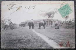 Indochine Hue Elephants Conduits à L'arene  Cpa Timbrée 1905 - Vietnam