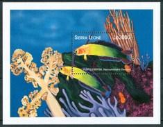 1998 Sierra Leone Pesci Fishes Fische Poissons MNH** - Sierra Leone (1961-...)
