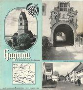 Dépliant Touristique 1939 HAGNAU Plages,Vignobles,Lac De Constance (Allemagne) - Dépliants Touristiques