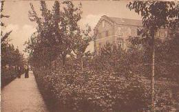 Estaimpuis   1198            Pensionnat St JB De La Salle. Les Jardins, Allée St Joseph - Estaimpuis