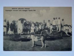 SOMALIA ITALIANA BRAVA 1911 CAPODOGLIO Capidoglio Colonie Ascari AOI Vecchia Cartolina - Somalia
