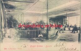 R252 - Bagni Di Telese - Benevento -  Buvette-1905 - Benevento