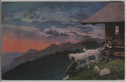 Alphütte Mit Ziegen, Chevres, Kinder - BE Bern