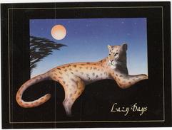 'Lazy Days' - Leopard - (By Mal Watson) - Tigres