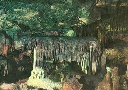 Castellana (Bari, Puglia) Grotte, La Lupa, La Louve, The She-Wolf, Die Wolfin - Bari