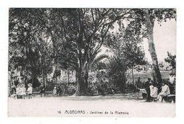 CPA ESPAGNE ALGECIRAS Jardines De La Almeda - Cádiz