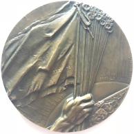 Médaille. Devant Le Roi Le 20 Juillet 1930 A Défilé L'Union Des Fraternelles De L'Armée De Campagne.  P. De Soete. 68 Mm - Belgique