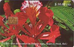 TARJETA TELEFONICA DE CUBA (FLOR DEL FRAMBOYÁN) (399) - Cuba