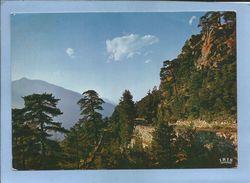 Muracciole Ghisoni (20-2B) Route Du Col De Sorba 2 Scans - France