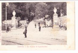 §§§ NAPOLI- Lo Scalone Di Capodimonte N°1665 §§§ - Napoli