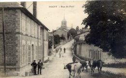 51 POGNY - Rue Du Pont - Animée, Vaches - France