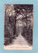 GAGNY  N° 21  CHATEAU CHESNAY  LE SOUS BOIS  An: Vers 1920  Etat: TB  Edit: Le Deley - Gagny