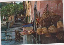 MARINA DI CAMPO ,isola,d'elba,italie,pano Rama,archipel Toscan - Livorno