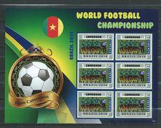 Cameroon / Cameroun. World Football Championship - Brasil 2014.Liberia S/S. MNH - Camerun (1960-...)