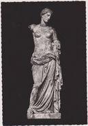 13,BOUCHES DU RHONE,ARLES,MUSEE ART PAIEN,VENUS,CARTE PHOTO - Arles