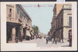 Recuerdo De Buenos Aires (ca 1900) : Calle Artes (14'749) - Argentine
