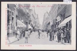 Recuerdo De Buenos Aires (ca 1900) : Calle Florida (14'751) - Argentine