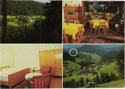 7624 Bad Rippoldsau - Pension Cafe Restaurant Berghof Mehrbildkarte - Bad Rippoldsau - Schapbach