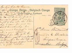 Belgisch Congo Belge  Entier CP 5c + TP(déf) Vie 91 Chasse Lion Chasse Lion V.BXL PR4820 - Entiers Postaux