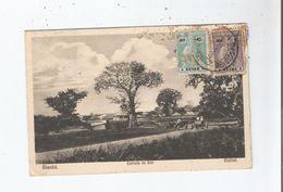 BISSAU GUINE . ESTRADA DE BOR 1930 - Guinea Bissau