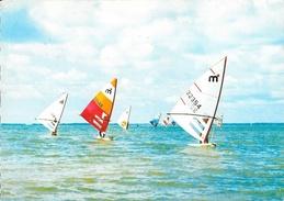 Wind-Surfing An Der Nordsee - Régate De Planche à Voile Mistral - Voile