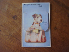 Irlande - Eire - Ireland - A Bagful Of Views From CORK - Carte Système 12 Petites Vues- System Card With 12 Small Views - Cork