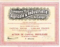Action Ancienne - Compagnie Agricole & Industrielle Du Congo - Titre De 1935 - Afrique