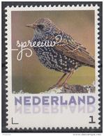 Nederland - September 2017 - Herfstvogels - Spreeuw - Vogels/birds/vögel/oiseaux - MNH - Sperlingsvögel & Singvögel