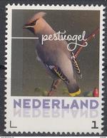 Nederland - September 2017 - Herfstvogels - Pestvogel - Vogels/birds/vögel/oiseaux - MNH - Niederlande