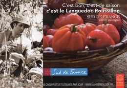 CPM - E - C'EST BON - C'EST DE SAISON - C'EST LE LANGUEDOC ROUSSILLON - SUD DE FRANCE C'EST NOTRE MARQUE - TOMATE - Languedoc-Roussillon