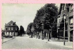 Beerse - Lindenlaan - Beerse