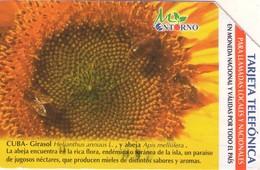 TARJETA TELEFONICA DE CUBA (URMET) (GIRASOL) (279) - Cuba