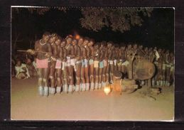 371s * SOUTH AFRICA * TRIBAL LIFE * VENDA GIRLS DANCING THE PYTHON DANCE *!! - Südafrika