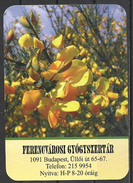 Hungary, Budapest, Yellow Flowers, Pharmacy Ad, 2017. - Calendarios
