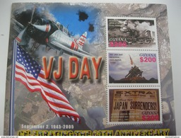 Guyana WWII VJ DAY IMG6657 - 2. Weltkrieg