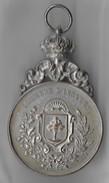 Bruxelles / Ixelles / Elsene / Medaille 'Concours International De Pêche à La Ligne' 15 Mai 1910. - Belgique