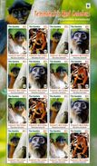 GAMBIA, 2016,MNH, WWF, MONKEYS, SHEETLET OF 4 SETS,  2 SETS WITH AND 2  SETS WITHOUT WWF EMBLEM! , HIGH FV - W.W.F.