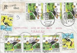 Congo 1978 Mbomo Crowned Crane Jabiru Storch Registered Cover - Kranichvögel