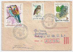 7652 Hungary SPM Nature Organization Job Flora Leaf Of Tree RARE - Nature
