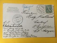 5601 - Cachet Manuscrit Güttigen Ambulant 2600 21.06.1904 Pour Oberentfelden Sur Carte Postale - Storia Postale